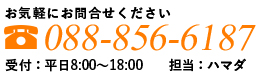 お気軽にお問い合わせください 088 856 6187